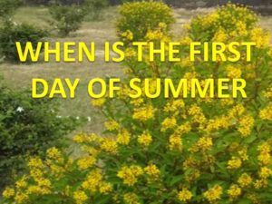 1st day of summer season official
