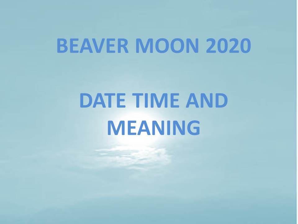 beaver moon 2020 november full moon