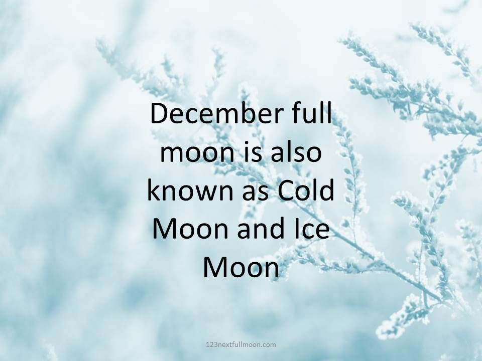 This image has an empty alt attribute; its file name is Cold-Moon-2021.jpg